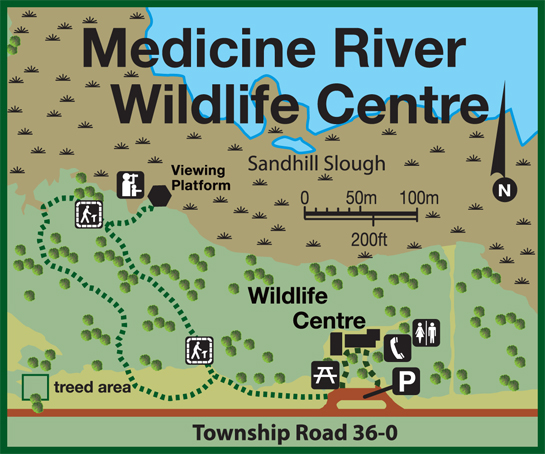 medicine-river-wildlife-centre