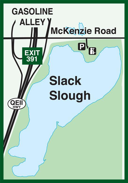 slack-slough
